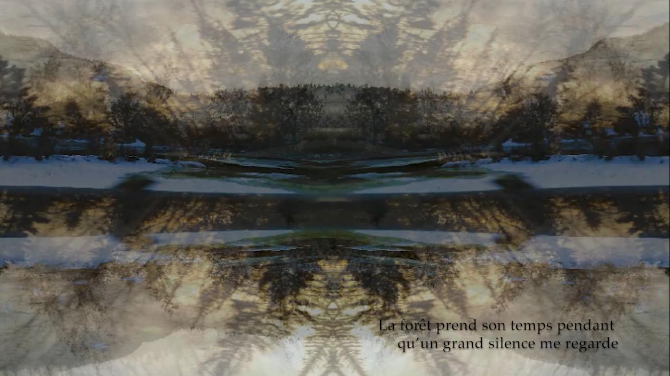 Vidéo d'art La forêt prend son temps pendant qu'un grand silence me regarde